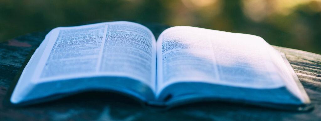 Bible in the sun shine